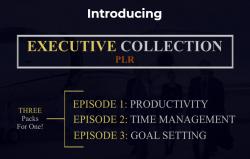 Executive Collection PLR Discount screenshot
